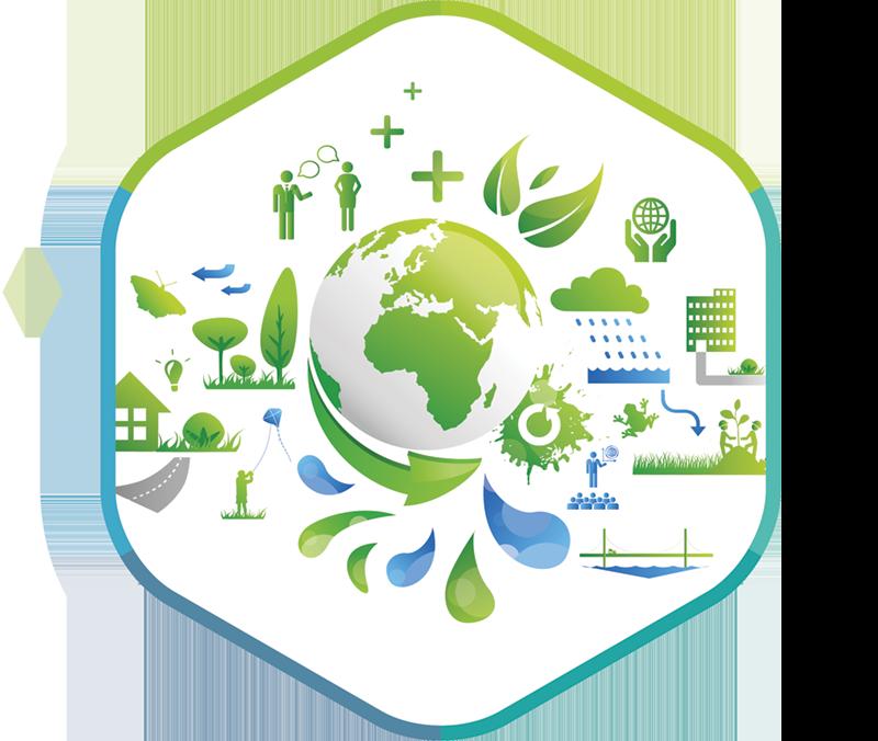 Le développement durable chez Dagard
